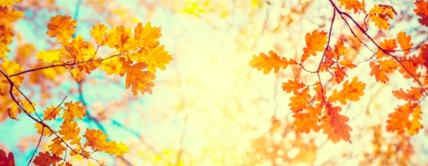 Fall-Car-Care-Tips