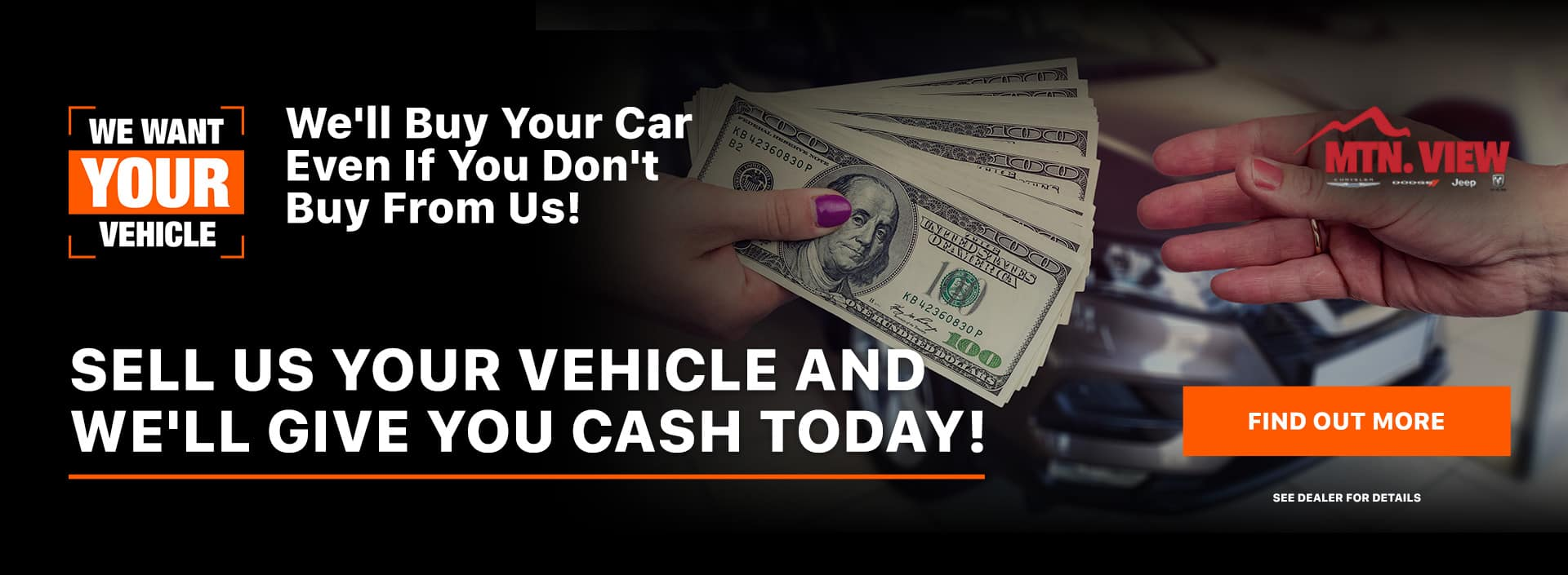 We'll Buy Your Car